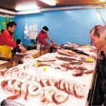 鮮度の良いブリ、鯛、タルいか等々販売